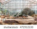 Botanical Garden Of Cactus