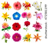 Stock photo collection flowers isolated on white background floristics bouquets wedding gift flat lay top 472581199