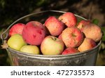 unwashed natural eco apples in... | Shutterstock . vector #472735573