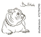 Dog Breed English Bulldog...