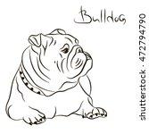 Dog Breed English Bulldog...