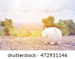Piggy On Nature Background....