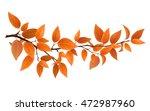 small tree branch with red... | Shutterstock .eps vector #472987960