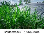 hdpe sheet biogas cover lagoon | Shutterstock . vector #473386006