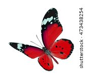 beautiful flying red butterfly  ... | Shutterstock . vector #473438254