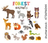 set of cute forest animals in... | Shutterstock .eps vector #473696044