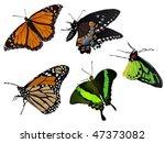 Reality Batterflies