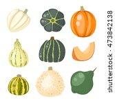 autumn collection of pumpkin... | Shutterstock .eps vector #473842138