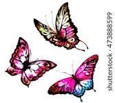 butterflies design   Shutterstock . vector #473888599