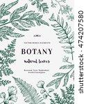 floral vector background.... | Shutterstock .eps vector #474207580