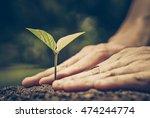 hands of farmer growing and... | Shutterstock . vector #474244774