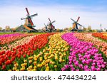 landscape with tulips ... | Shutterstock . vector #474434224