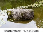 Big Stone In Park Pond