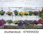 Hanging Basket Of Flowers In...