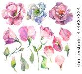 watercolor flowers | Shutterstock . vector #474637324