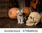 kitten on wooden floor with... | Shutterstock . vector #474868426