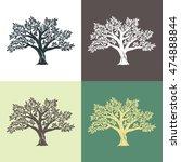 hand drawn graphic argan trees...   Shutterstock .eps vector #474888844