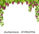 frame from hanging bunches of... | Shutterstock .eps vector #474962956
