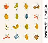 autumn leaves vector collection ... | Shutterstock .eps vector #474983038