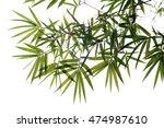 bamboo leaves | Shutterstock . vector #474987610
