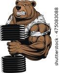 vector illustration  a... | Shutterstock .eps vector #475083088
