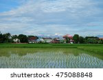 green paddy rice fields and... | Shutterstock . vector #475088848
