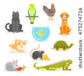 Stock vector vector set of various home pets cat dog parrot and others 475274716