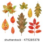 hand drawn watercolor autumn... | Shutterstock . vector #475285378