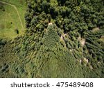Aerial View Of Green Field Wit...