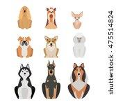 vector illustration of... | Shutterstock .eps vector #475514824
