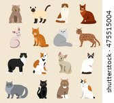 Stock vector cat breeds cute pet animal set vector illustration cat breed animal and cartoon different cats 475515004