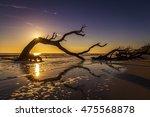 Sunrise Over A Driftwood...