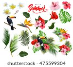 a set of   tropical flowers  ... | Shutterstock .eps vector #475599304
