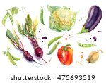 Watercolor Vegetables Set With...