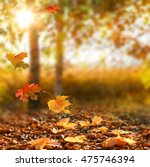 beautiful autumn landscape with ... | Shutterstock . vector #475746394