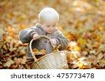 Toddler Having Fun In Autumn...