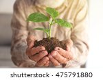 old man holding plant in hands | Shutterstock . vector #475791880