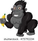 cartoon funny gorilla holding... | Shutterstock . vector #475792234