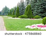 flowerbed. beautiful bushes | Shutterstock . vector #475868860