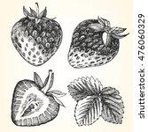 hand drawn illustration of... | Shutterstock .eps vector #476060329