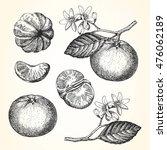 hand drawn illustration of... | Shutterstock .eps vector #476062189