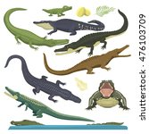 cartoon green crocodile reptile ... | Shutterstock .eps vector #476103709