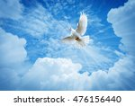 dove in the air over cloudy sky ... | Shutterstock . vector #476156440