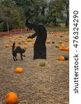 Halloween Pumpkins Patch With ...