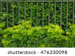 Fence Of Residential House...