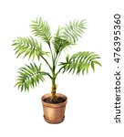 hand drawn pot plant.... | Shutterstock . vector #476395360
