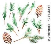 Set Of Watercolor Pine Cones...