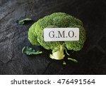 head of broccoli with gmo... | Shutterstock . vector #476491564