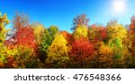 panorama of multi colored trees ... | Shutterstock . vector #476548366
