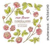 rose | Shutterstock .eps vector #476564140